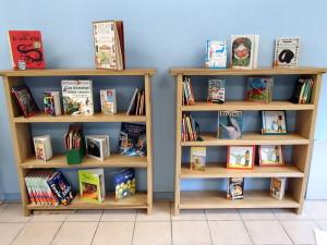 Hay cientos de libros en español disponibles.